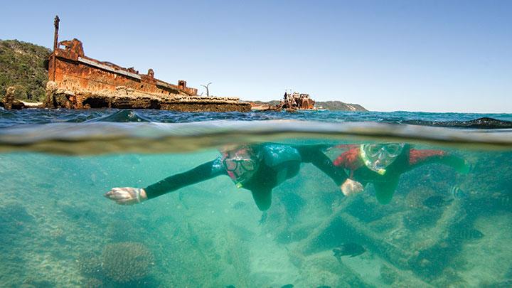 澳洲昆士兰自由行攻略海豚岛