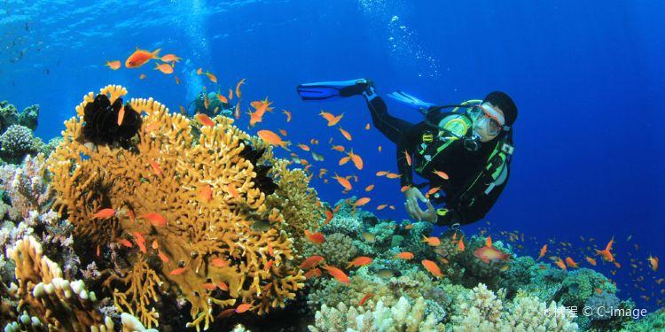 昆士兰景点-凯恩斯大堡礁