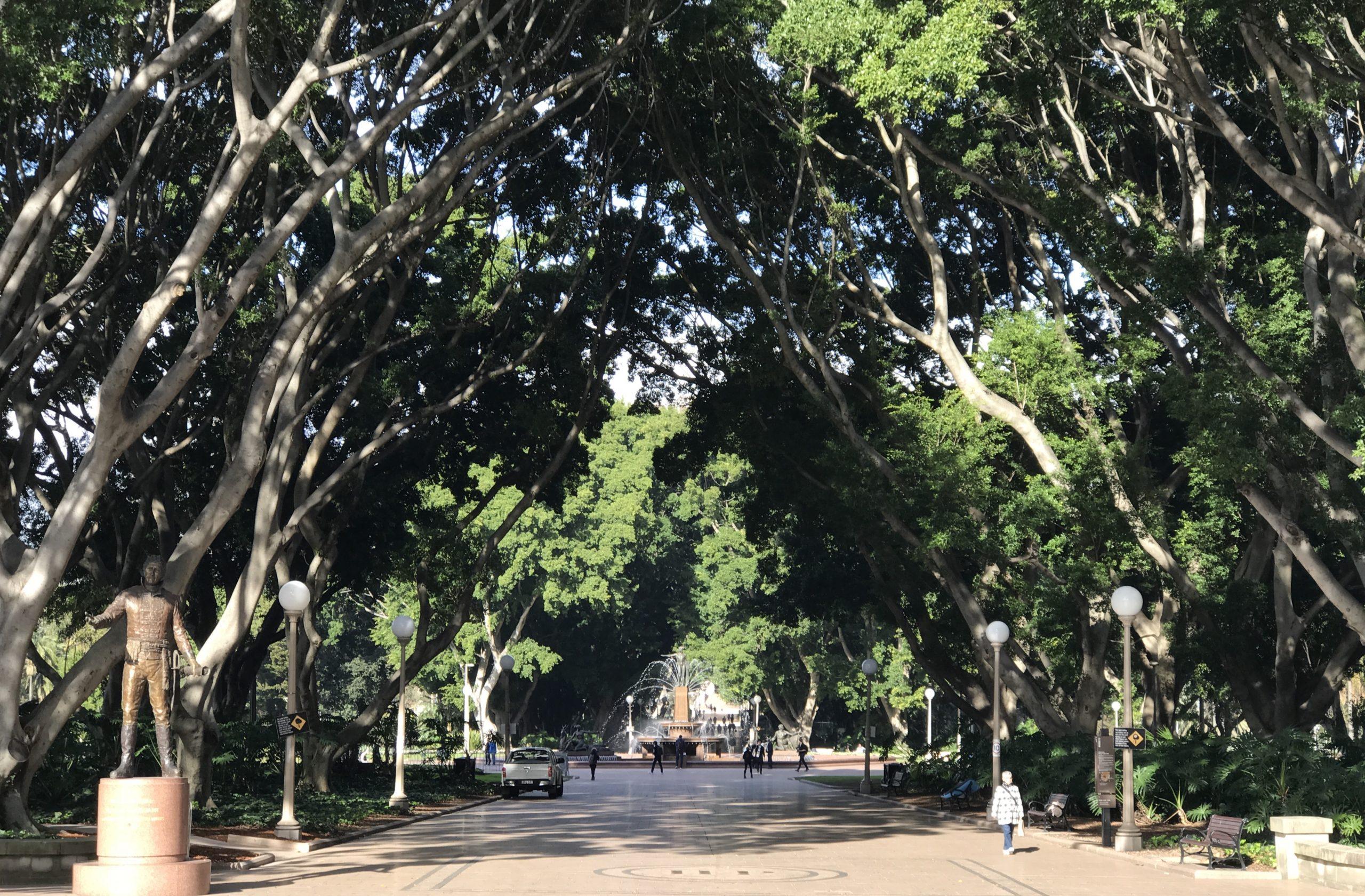Hyde Park Sydney 悉尼旅游公园