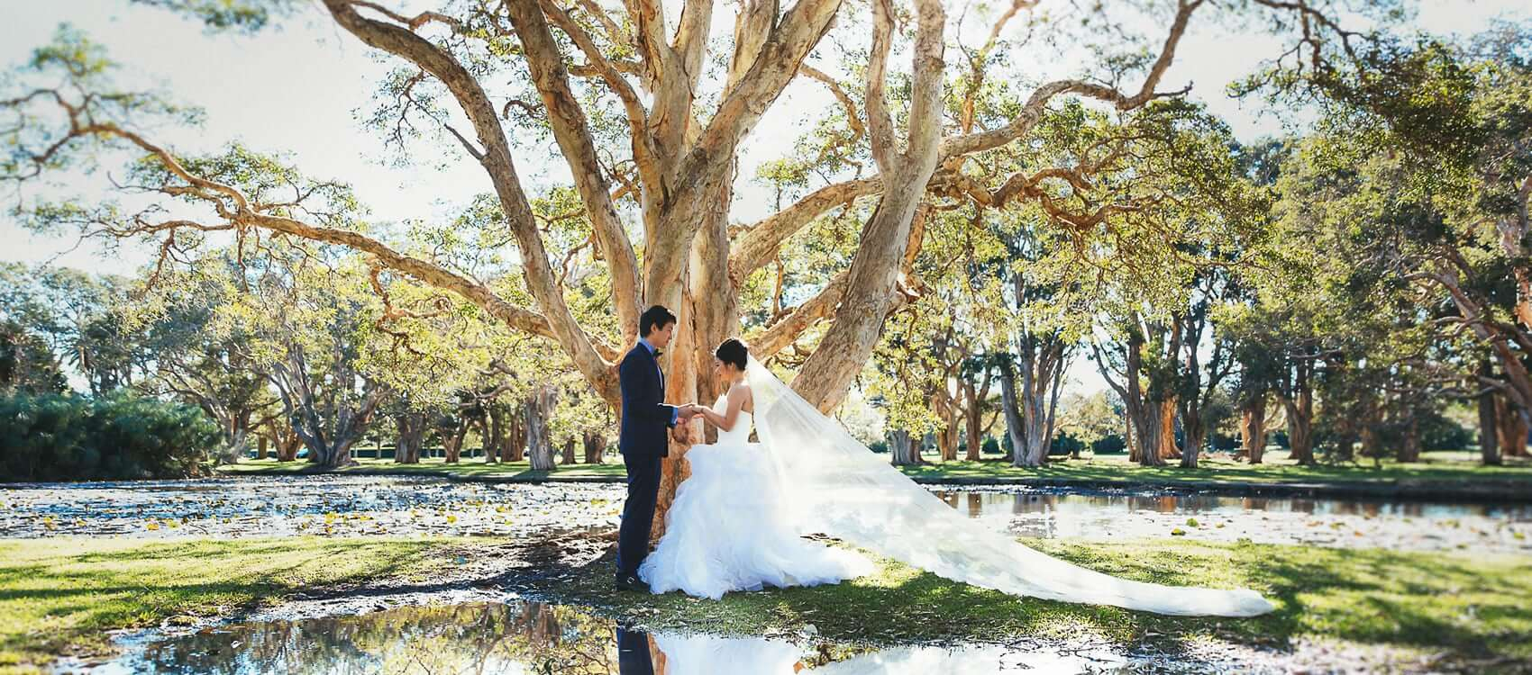 悉尼公园结婚Centennial Park Wedding